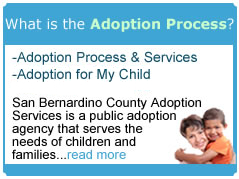 What is the adoption process image